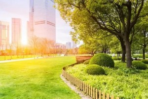 上海近期天气晴好市民别急着出门晒太阳